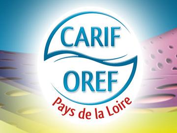 carif360x270